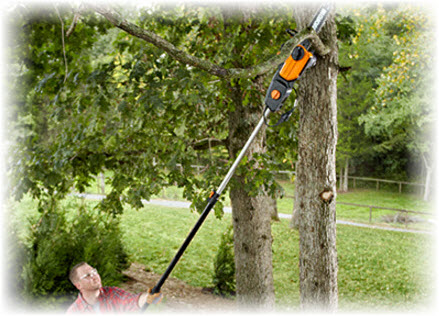 best pole saw reviews